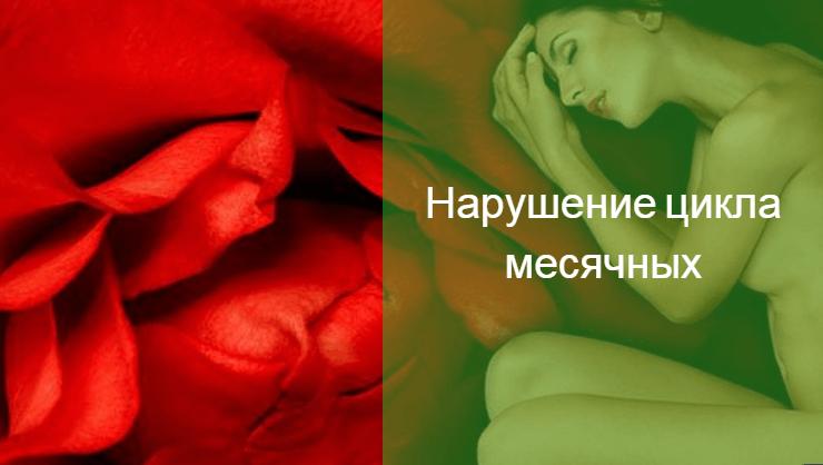 менструальный цикл короткий