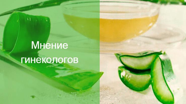 как сделать тампон с медом и алоэ